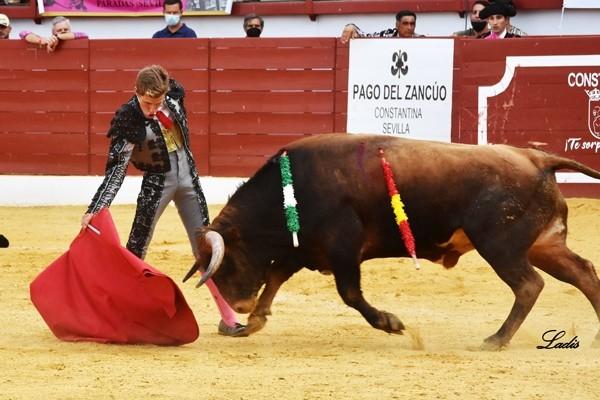5-Pedro-Herrera.-f.-Ladis-3