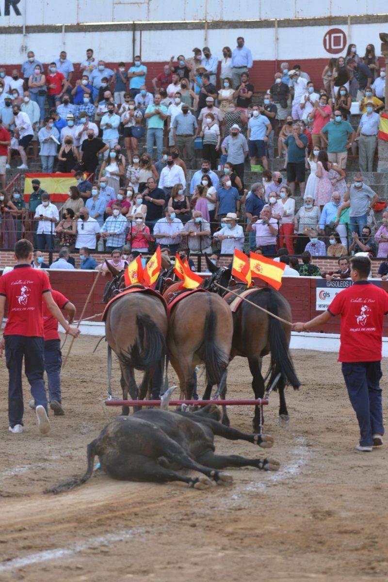 12-El-Espinar-vuelta-toro-Garcia-Jimenez