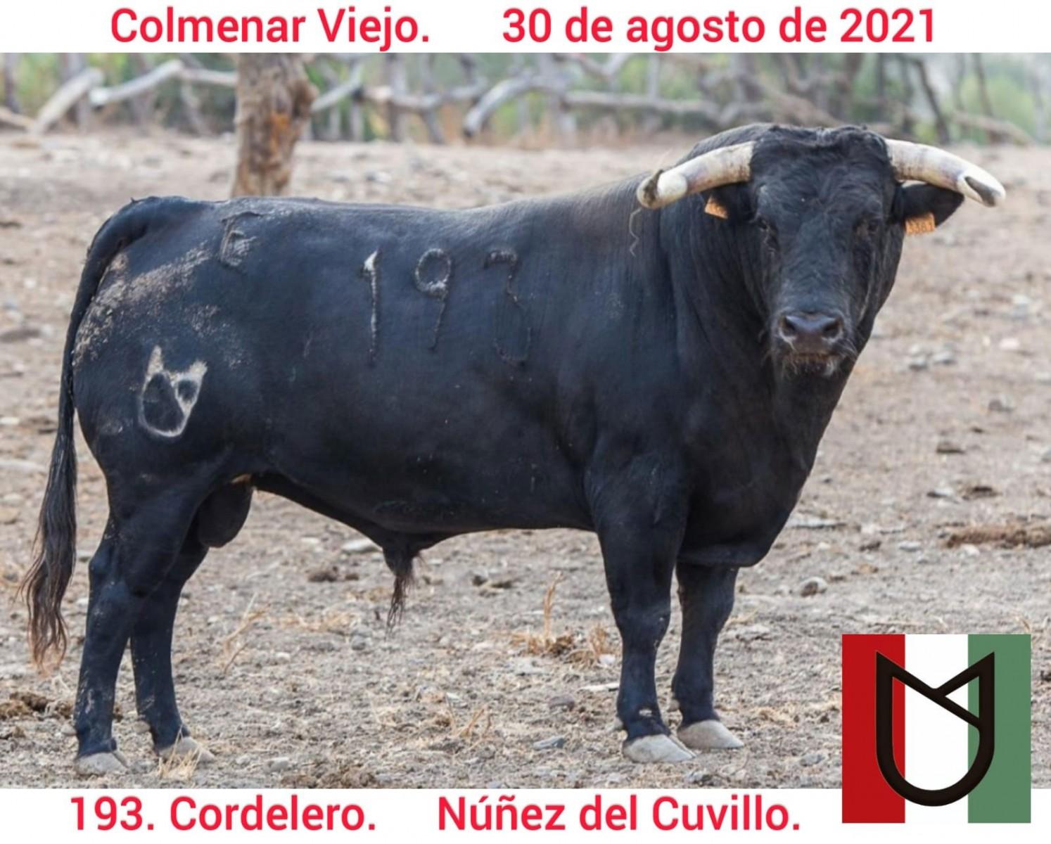 nc193cordelero