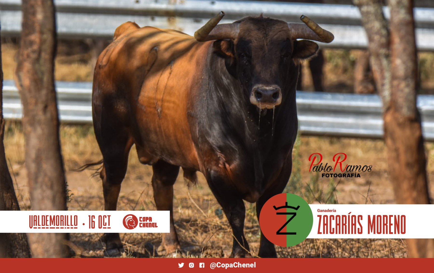 ZACARIAS-MORENO-2