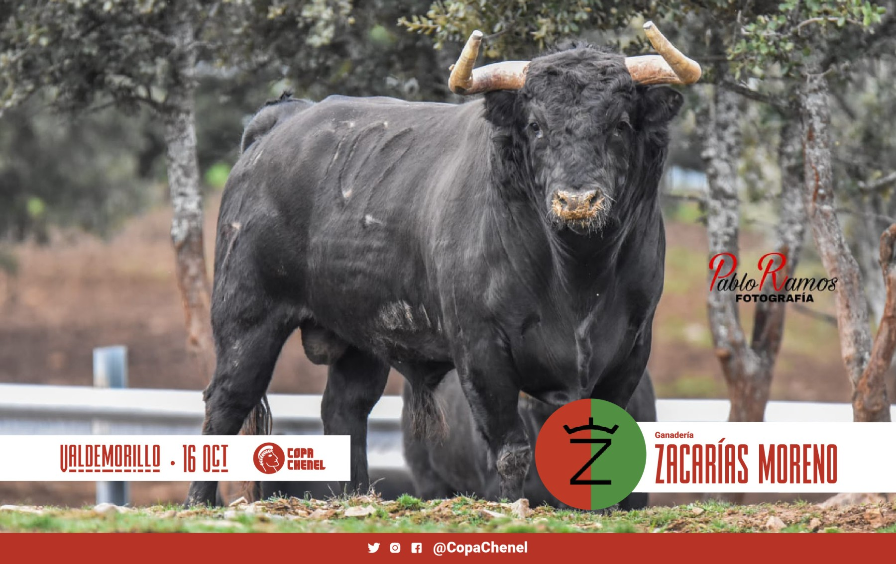 ZACARIAS-MORENO-3