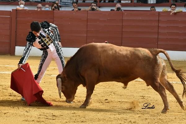 1-Alfonso-Alonso.-f.-Ladis-1