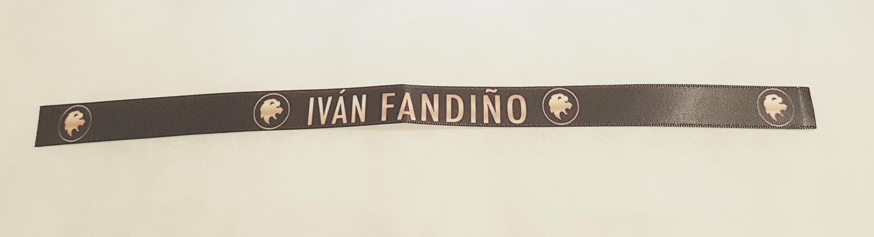 Resultado de imagen de homenaje de Orduña a Iván Fandiño